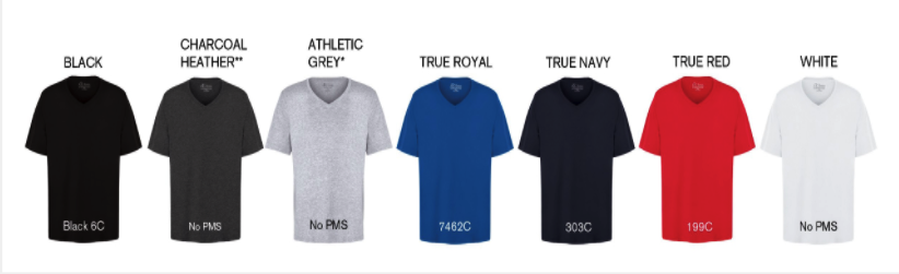Men Vneck Tshirt colors